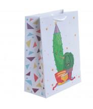Cadeautasje medium cactus